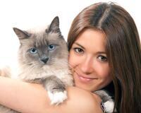 Причини завести пухнастого улюбленця - котика id117070386