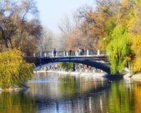 Знайомства Дніпро. Романтична зустріч і найцікавіші місця. id2069182292